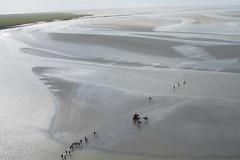 Mont-Saint-Michel - Normandy, France (gadymz) Tags: france horse montsaintmichel normandy tide walk pontorson normandie