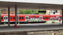 Graffiti (Honig&Teer) Tags: spraycanart sport sbahn steel eisenbahngraffiti eisenbahn honigteer hannover railroad railroadgraffiti railways train treno traingraffiti trainart