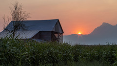 The Last Day (Paul Rioux) Tags: canada britishcolumbia bc fraservalley lowermainland chilliwack farm barn country rural agriculture sunrise dawn morning daybreak mountains prioux outdoor