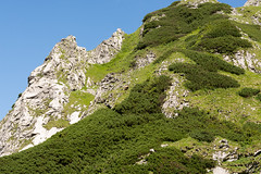Kozica (serio :)) nad Kobylarzowym lebem (czargor) Tags: giewont outdoor mountains mountainside inthemountain nature landscape