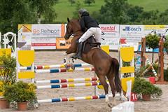 DSC03534_s (AndiP66) Tags: springen ruswil buholz 2016 juni pferd horse schweiz switzerland kantonluzern cantonlucerne sursee concours wettbewerb horsejumping springreiten pferdespringen martinameyer grueb wolhusen luzern sony sonyalpha 77markii 77ii 77m2 a77ii alpha ilca77m2 slta77ii sony70400mm f456 sony70400mmf456gssmii sal70400g2 andreaspeters geiss ch
