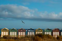 Summer feeling// Sensaciones de verano (Mireia B. L.) Tags: summer verano beach playa platja beachhouses mediterraneansea marmediterrneo catalonia catalunya