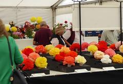 Blooms (sue tortoise) Tags: shrewsbury flowershow flower show 2016