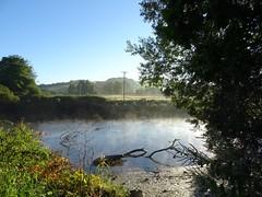 The white ladies were dancing this morning (Phil Gayton) Tags: whitladies mist morning river dart totnes devon water meadow