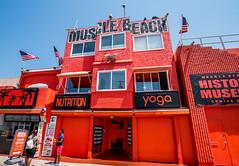 Venice Beach (jimsheaffer) Tags: venicebeach musclebeach orange nikond750 venice california tourism tourists streetphotography nikkor1835mmf3545gedlens nikkor1835mmlens wideanglelens nikonwideangle