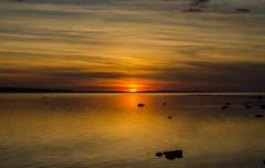 Sunset in resund (frankmh) Tags: sunset sky sea water hittarp skne sweden resund denmark