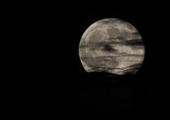 Moon 8 18 16 021 (Az Skies Photography) Tags: august 18 2016 august182016 81816 8182016 sky night nightsky canon eos rebel t2i canoneosrebelt2i eosrebelt2i rio rico arizona az riorico rioricoaz arizonasky skyscape arizonaskyscape moon luna