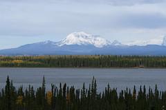 Mount Drum and Copper River (schandle) Tags: alaska copperriver mountdrum wrangellmountains wrangellsainteliasnationalpark autumn
