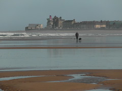 One Man And His Dog (Munki Munki) Tags: redcar beach sea surf onemanandhisdog dogwalker coatham beacon cinema reflections