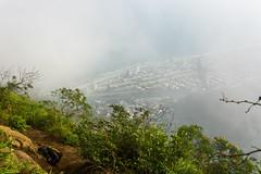 DSC_4112 (sergeysemendyaev) Tags: 2016 rio riodejaneiro brazil    pedradagavea mountain hiking trilha carrasqueira