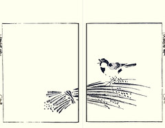 Rice and great tit (Japanese Flower and Bird Art) Tags: flower rice oryza sativa poaceae bird great tit parus major paridae bunrei kato nanga nagasaki woodblock picture book japan japanese art readercollection