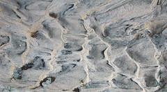 Asymmetrical ripples (El Malpais National Monument, New Mexico, USA) 2 (James St. John) Tags: asymmetrical ripple ripples rippled sand fluvial dry creek stream el malpais national monument cibola county new mexico