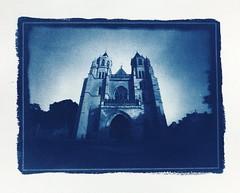 The cathedral (vincent-photo) Tags: pinhole stnop 18x24 diy dryplate largeformat cyanotype homemade dijon gelatin silvergelatin alternative