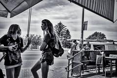 63+046: Coffee break (geemuses) Tags: sculpturebythesea2016 sculpture art streetphotography candidphotography rhinocerous bondi tamarama surf sea coastalwalk bondiicebergspool bondibeach water ocean sand beach thong landscape scenery scenic