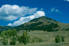 Druid Peak. Yellowstone (spotwolf5) Tags: druidpeak yellowstonepark