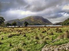 Crummock view (Ian Gedge) Tags: england uk britain cumbria lake lakes lakedistrict water crummock mountains trees