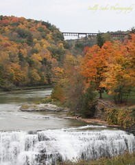 IMG_9555 (Sally Knox Sakshaug) Tags: letchworth state park new york fall autumn october colors leaf leaves orange yellow stone grey gray brown green red beautiful pretty scenic gorge ravine cliff wall edge side river water valley deep crevice waterfall white spectacular falls beauty middle large major mighty strong powerful impressive awe inspiring genesee portagecanyon railroad rr bridge portage viaduct iron metal old norfolk southern railway 2016 upper above