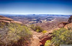 Canyonlands National Park (EVERY SO OFTEN) Tags: utah us usa canyonlands national park texture flora colorado river carve sony nex7 e1018mmf4 high view vista