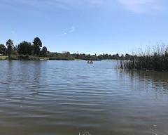 013 Here Comes The Rescue Boat (saschmitz_earthlink_net) Tags: 2016 california longbeach eldorado orienteering laoc losangelesorienteeringclub losangeles losangelescounty eldoradoeastregionalpark park parks lake paddleboat
