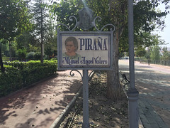cartel-pirana