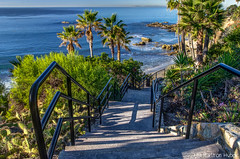 Just Steps From The Beach - HDR_7599_600_601_602 (www.karltonhuberphotography.com) Tags: ocean california trees light cactus seascape beach nature lines horizontal stairs landscape outdoors island coast sand rocks waves pacific horizon steps sunny wideangle palmtrees pacificocean catalinaisland southerncalifornia orangecounty hdr theoc lagunabeach stairrail naturephotography 2014 sidelight southcounty leadinglines landscapephotography beachcity nikkor1735mm creativeperspective creativeeffect nikond7000 karltonhuber