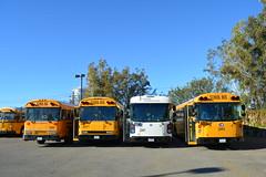 C7, C9002, C8198, C8411, C8415 - DSC_0921 (crown426) Tags: california bluebird schoolbus santaana aare allamerican crowncoach supercoach a3re certifiedtransportation mfsab a426tac11 d3re multifunctionschoolactivitybus t3re