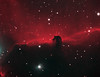 Horsehead Nebula in Orion (astroturtle) Tags: horse head nebula orion astronomy alpha ic434 horsehead hydrogen g11 starlight xpress oiii halpha losmandy astrophotograhpy autoguider starlightxpress astrotech astronomik starshoot mx716 65edq