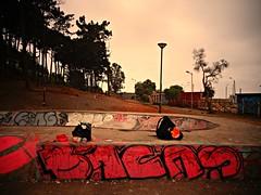 Skatepark pichilemu (BICAS!) Tags: