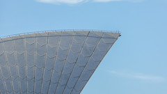 Fin in Profile (Theen ...) Tags: blue sea sky white ferry lumix shiny pattern harbour top profile sydney rail tiles operahouse matte irridescent backbone wondrous beauteous theen