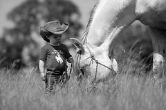 Trust Me I'm A Cowboy (Jagoda 1410) Tags: childhood horsemanship littlecowboy childrensphotography arabianstallion horsearabian littlehorseman horsewhipper boywihastallion