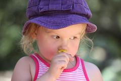 IMG_5906 (lilbuttz) Tags: park flower hat june like 2012 celeste foothill foothillpark june2012