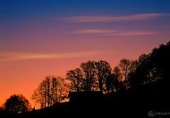 Paper Cut Silhouette ? (LeWelsch Photo) Tags: trees shadow sky house color silhouette sunrise switzerland bern papercut slope scherenschnitt gurten lewelsch a6000 sel55210 papiercoup cloudskniz