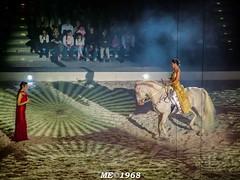 Apassionata - La Pricipessa e L'Amazzone (iw2ijz) Tags: people italy horse yellow person actors italia milano forum persone giallo luci rosso cavalli artisti assago attori appassionata attleti