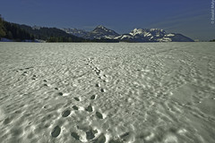 Landscape in Tyrol (Alzheimer1) Tags: winter snow austria tirol tyrol