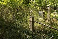 IMG_7621 (RARstudios) Tags: newhopecemetery abandoned cemetery rarstudios newhope