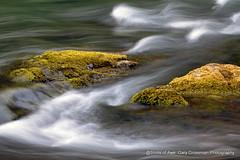 Z (Gary Grossman) Tags: river dawn whitewater cascades z umpqua firstlight cascademountains northumpquariver riverscape umpquariver garygrossmanphotography shotsofawe