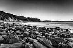 M1150831-Edit.jpg (meerecinaus) Tags: longreef beach collaroy newsouthwales australia au