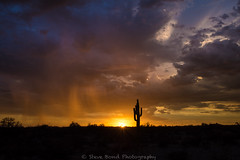 that setting sun 2_8109524 (steve bond Photog) Tags: sunset arizona wittmannaz stevebond surreal colorful