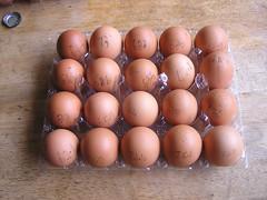 Aldi Healy's Farm 20 Large Hen Eggs 2 x @3.49 01082016 16-07-2016 - Box 1 - Eggs Weighted (Lord Inquisitor) Tags: aldi healys farm hen heneggs brown 01082016 eggbox