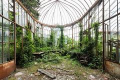 Tel est pris qui croyait prendre (https://www.facebook.com/FlorianLavieBadiePhoto) Tags: urbex serre botanic fougres mousse vert nature oubli perdu abandoned abandonn