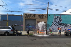 IMG_4364 (Mud Boy) Tags: nyc newyork brooklyn bushwick summer streetscene hydrant graffiti firehydrant streetart