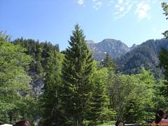 Neuschwanstein_07_06_2012_41 (Juergen__S) Tags: neuschwanstein castle disney cinderella bavaria bayern alps landscape outdoor mountain