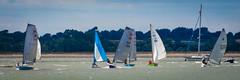 W&FYC_PIER_RACE_2016-0104 (Stewart's 2013/365) Tags: walton frinton yacht club dingy sailing 2016 backwaters stone point pier