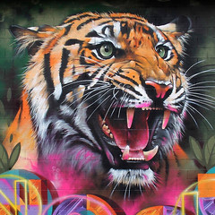 Images gallery (#12) of street art, the best unauthorized art (PhotographyPLUS) Tags: articles footage freephoto graphics illustrations images photos pictures stockimage stockphotograph stockphotos