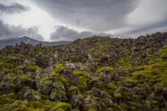 Berserkjahraun 32 (raelala) Tags: 2016 berserkjahraun snaefellsnes snaefellsnespeninsula canon1785mm crater europe europeantravel iceland icelanding2016 lava lavafield photographybyrachelgreene ringroad roadtrip scandinavia thatlalagirl thatlalagirlphotography thatlalagirlcom travel