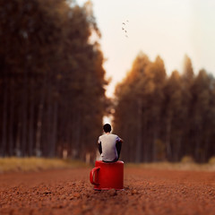 Sometimes it feels like you're waiting forever. (DougSillva) Tags: woods 50mm conceptphotos conceptual squared