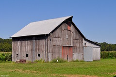 Ready for the harvest (Jake (Studio 9265)) Tags: old barn wooden aged weathered vernon indiana usa united states america september 2016 nikon d5000 farm crops