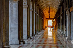 Sunrise at the other end of a colonnade - Venice, Italy (Phil Marion (55 million views - thanks)) Tags: public italian phil marion 5photosaday beauty beautiful travel vacation candid beach woman girl boy wedding people explore  schlampe      desnudo  nackt nu teen     nudo   kha thn   malibog    hijab nijab burqa telanjang  canon  tranny  explored nude naked sexy  saloupe  chubby young nubile slim plump sex nipples ass hot xxx boobs dick dink
