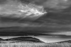 Un poco de luz (ccc.39) Tags: asturias gozn cantbrico costa nubes nublado tormentoso claro rayos mar hierba monocromo blancoynegro blackandwhite bw