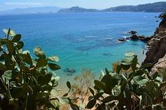 Skikda Beach - Algeria (khalid.lebdioui) Tags: mer soleil été plage figue barbarie prickly pear nikon d5200 algeria skikda sun sea summer beach dzflickrs